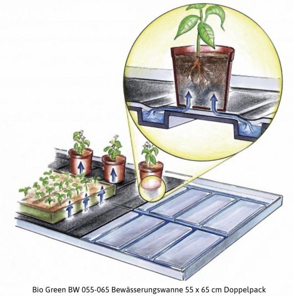 BIO GREEN BWU 055-065 BEWÄSSERUNGSWANNE 55 X 65 CM DOPPELPACK
